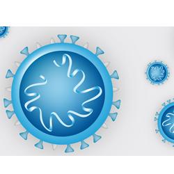 Coronavirus - alle Schulinformationen